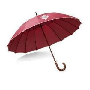Afbeelding van 25 st. Bedrukte paraplu Klittenbandsluiting Ø 113 cm bedrukken bedrukken In 3 werkdagen