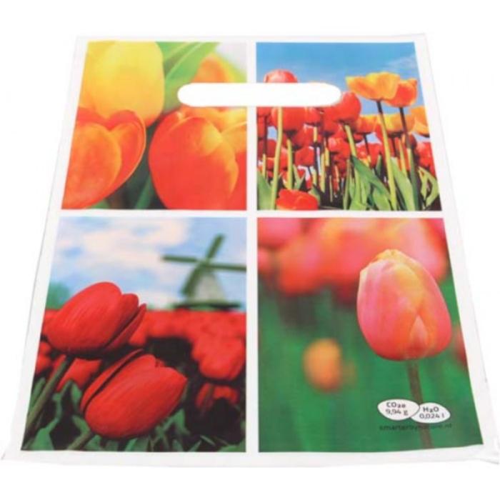 Afbeelding van 10000 st. Plastic tassen bedrukken Tas Full Colour geschikt voor A4 In 20 werkdagen