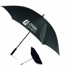 Sturm Regenschirm | Groß