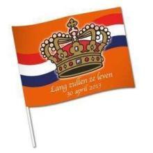 Flaggen bunt 21 x 31