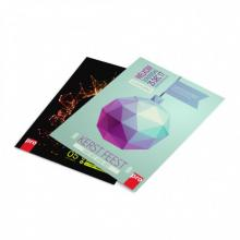 Poster A4   21 x 29,7 cm
