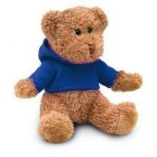 Teddybär mit Shirt